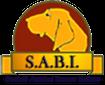logo_sabi