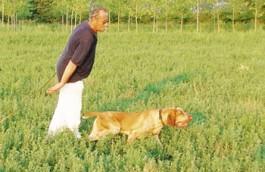Bottani Luigino (papà di Tullio) con Laerte.